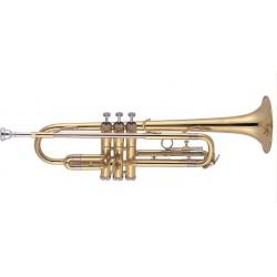 Trompeta de Estudio JMICHAEL TR200 Lacado